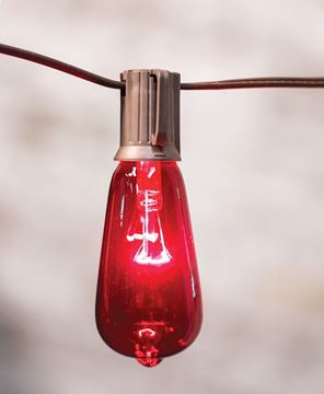 Red & Green Edison String Lights