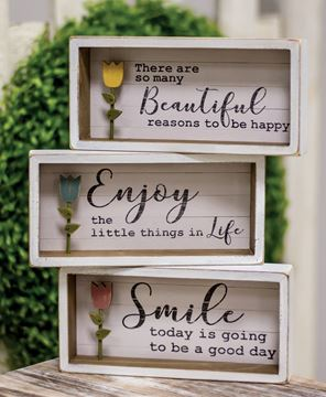 Picture of Beautiful Tulip Shadow Box Sign