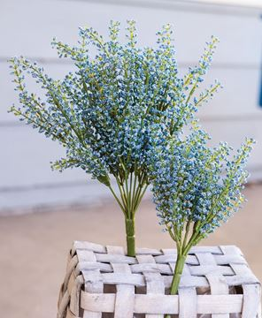 Picture of Bursting Astilbe Bush, Sky Blue, 14""