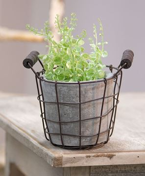 Picture of Classic Cement Planter w/ Rustic Wire Basket