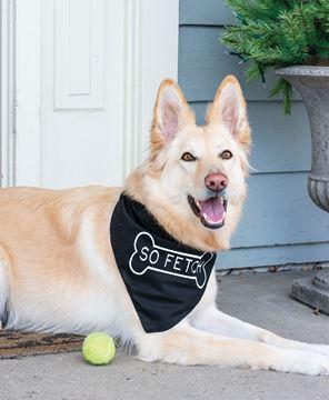 Picture of So Fetch Doggie Bandana