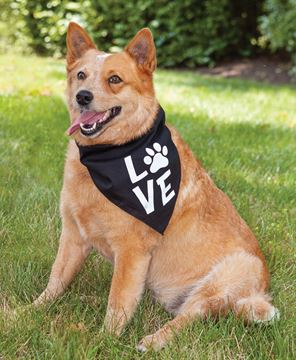 Picture of Love Paw Doggie Bandana