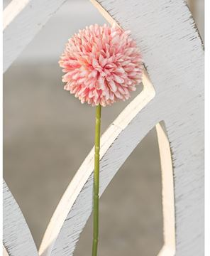 Picture of Pompom Stem, Blush
