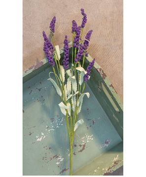 Picture of Purple Heather Spray