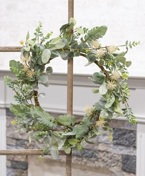 Picture of Aberdeen Sea Holly Wreath, 20""