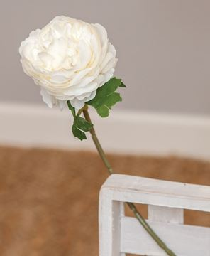 Picture of White Peony Stem