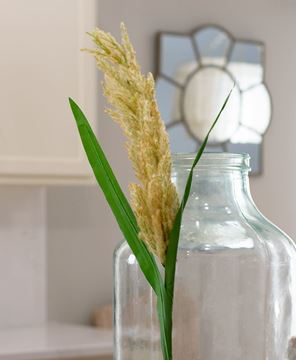 """Picture of Pampas Grass Spray, 43.5"""""""