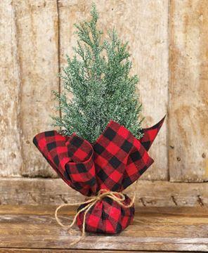 Picture of Mini Cedar Tree w/Red & Black Buffalo Check Base
